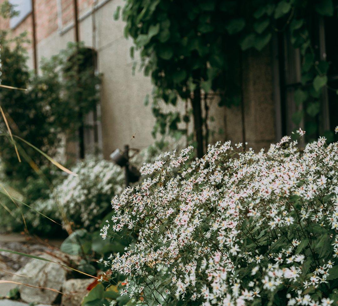 City Garden Gröna Systrar-06